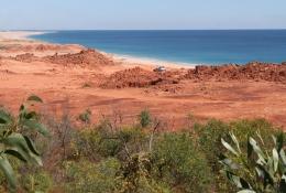Beagle Bay