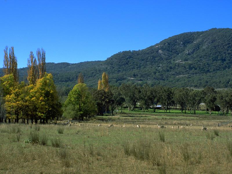 Bundarra, NSW - Aussie Towns