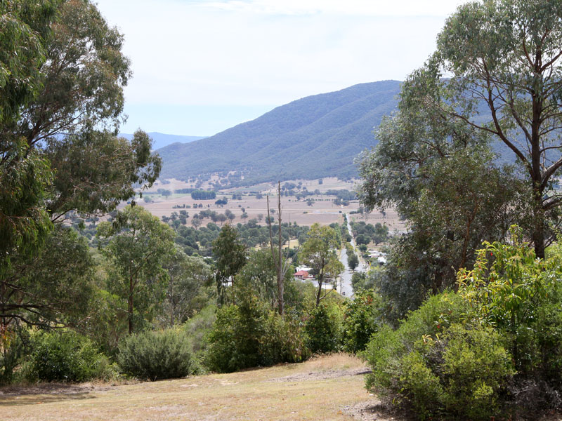 Dog Park In Corryong