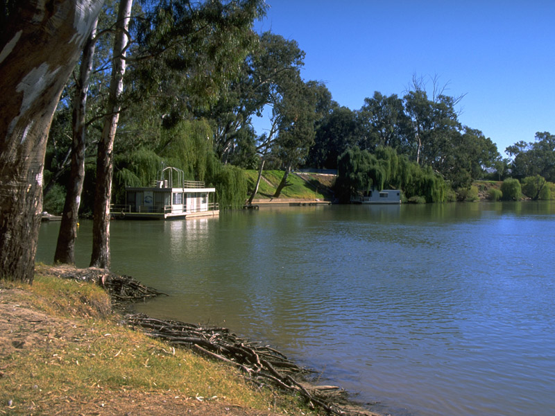 Deniliquin Australia  city photos gallery : The banks of the Edward River at Deniliquin.