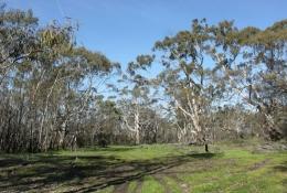 Mooree Reserve
