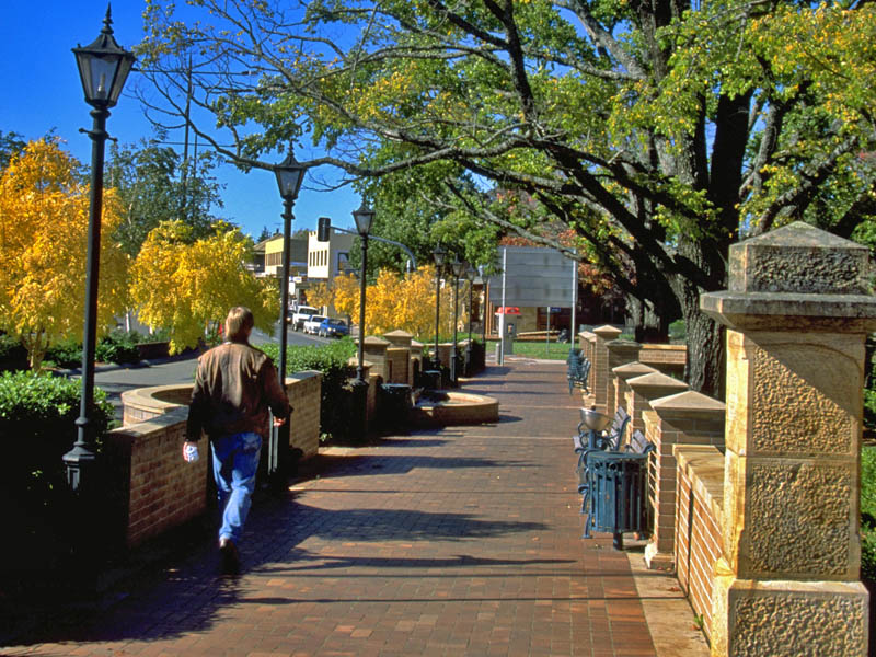 Mittagong Australia  city photos : Autumn colours in the main street of Mittagong.