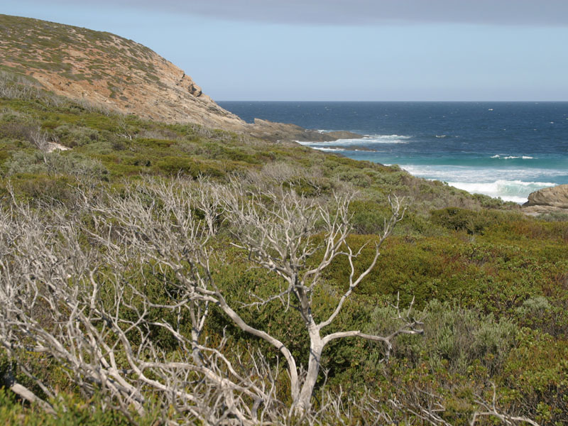 Bremer Bay