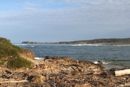 Tuross Head